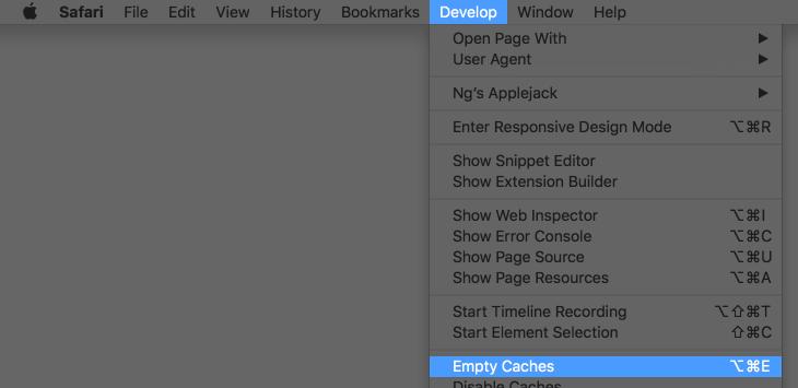 "Screenshot of the Develop menu, highlighting ""Empty Caches"""